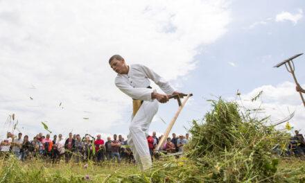 Dani kosidbe na Kupresu održani prvi put pod zaštitom UNESCO-a