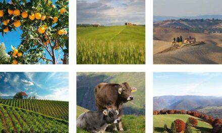 Federalno ministarstvo poljoprivrede, vodoprivrede i šumarstva objavljuje – Podnošenje zahtjeva za podršku po modelu ruralnog razvoja